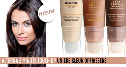 alterna-2-minute-touch-up