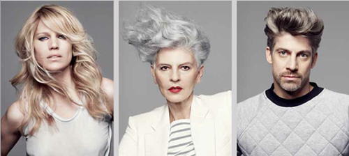 Goldwell-gorgeous-grey