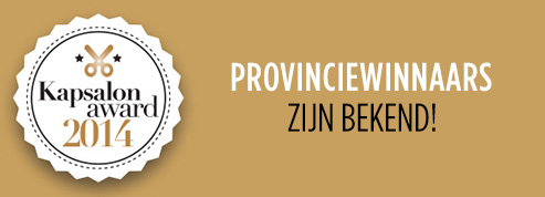 provinciewinnaars-kapsalon-award-2014