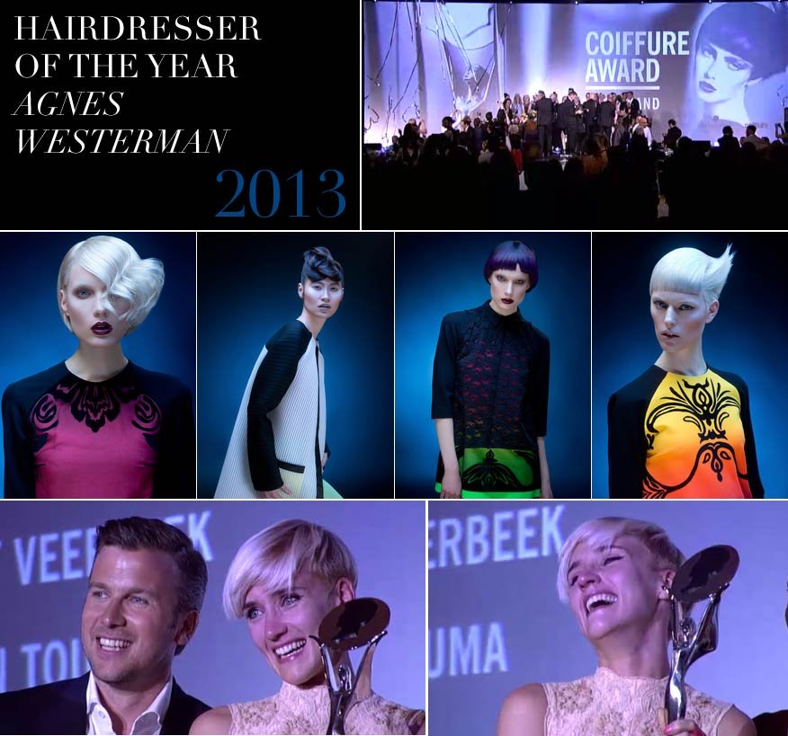 hairdresser-of-the-year-2013