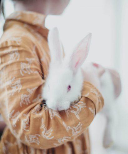 Kenners aan het woord: haarproducten & dierproeven
