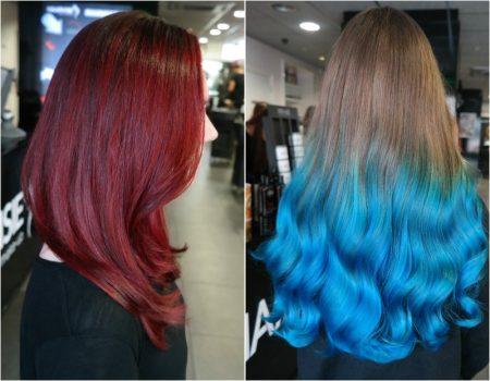 Het toverstokje van de kapper maakt je haar ... Red or Blue